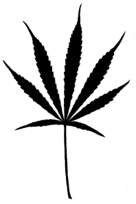 PhyloPic_Cannabis